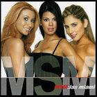 msm2003.jpg