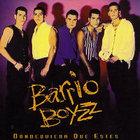 barrioboyzz1993.jpg